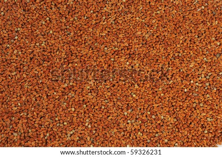 Red millet seed close up as background - stock photo