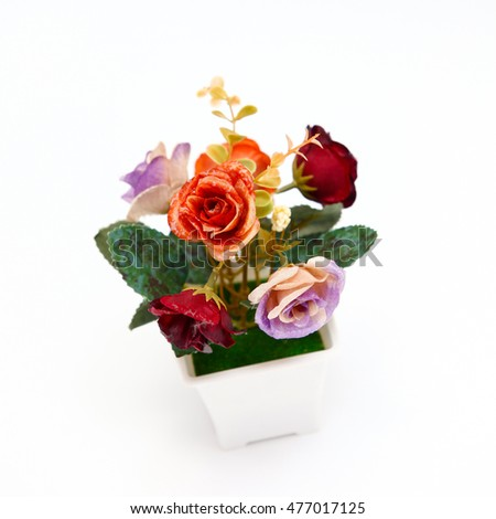 Red orange purple roses flowers on with background,Flowerpot,Colorful flowers.