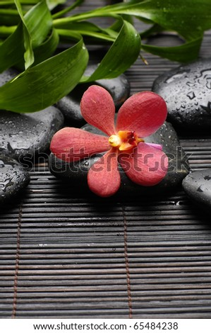 Red orchid and zen Stones with green plant on mat - stock photo