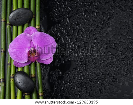 Red orchid with two stones on bamboo grove on wet background - stock photo