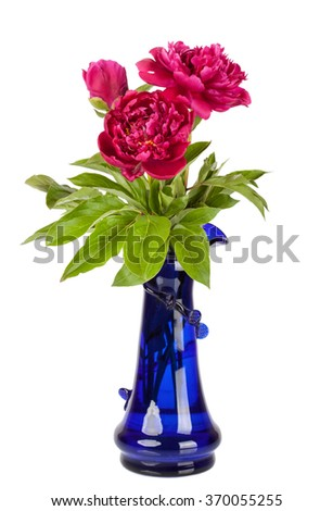 Red peony flower in vase isolated on white - stock photo