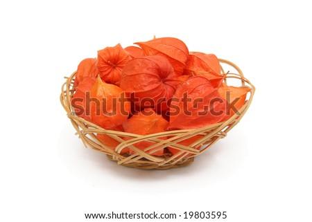 Red Physalis alkekengi in creel - stock photo