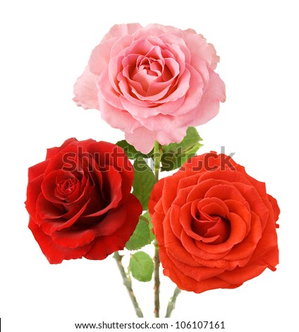 Red, pink and orange bouquet isolated on white background - stock photo