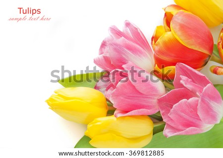 Red, pink and yellow tulips bunch isolated on white background with sample text - stock photo