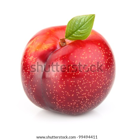 Red plum with leaf - stock photo