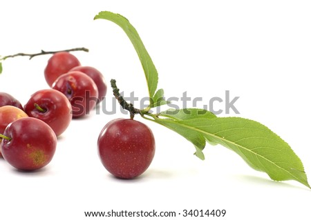 red plums on white