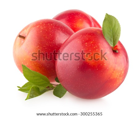 red plums on white background - stock photo