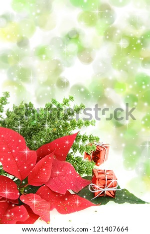 Red poinsettia flower with Christmas decoration