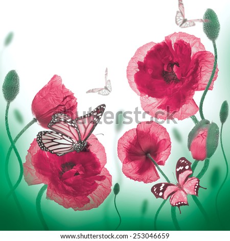 Red poppies field and blue cornflowers,  butterfly - stock photo