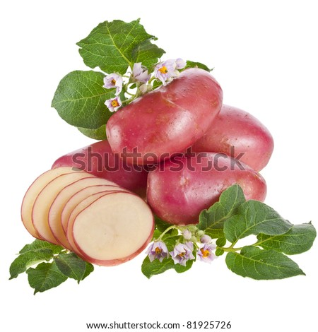 red potato with leaves  isolated on white - stock photo