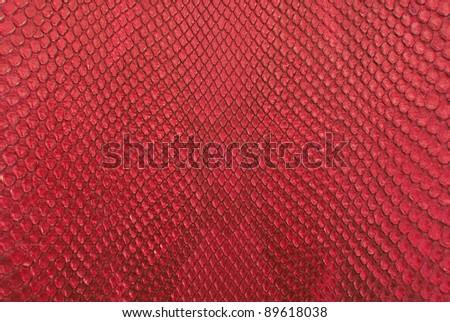 Red python snake skin texture. - stock photo