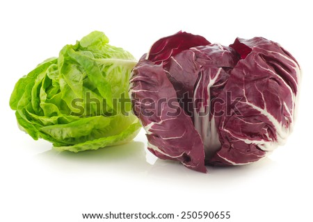 """red """"radicchio"""" lettuce and green """"little gem""""lettuce on a white background - stock photo"""