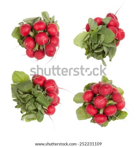 Red radish isolated on white background - stock photo