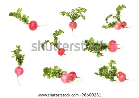 Red radish. Isolated over white background - stock photo