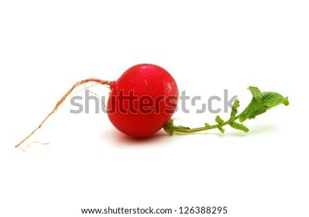 Red radish on white background - stock photo