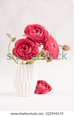Red ranunculus in a vase - stock photo