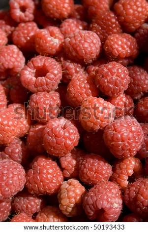 Red raspberries - stock photo