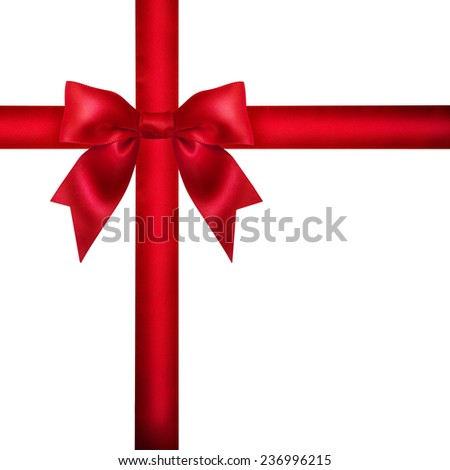 Red ribbon bow on white background. Studio shot. Free space for text