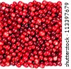 Red ripe cranberries background - stock photo