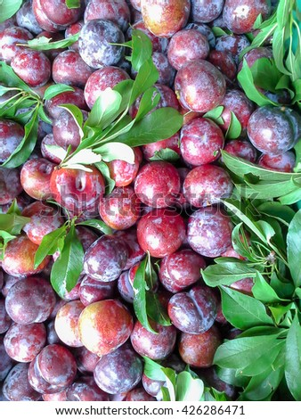 Red ripe plums - stock photo