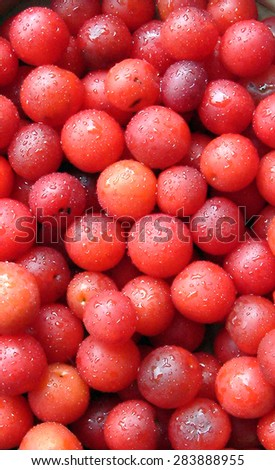 Red ripe plums background