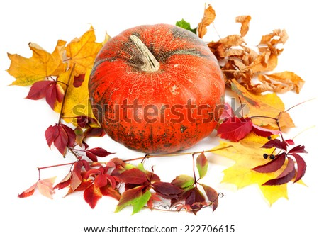 Red ripe pumpkin and autumn leaves. Isolated on white background - stock photo