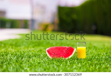 Red ripe slice watermelon and glass of orange juice on green grass - stock photo