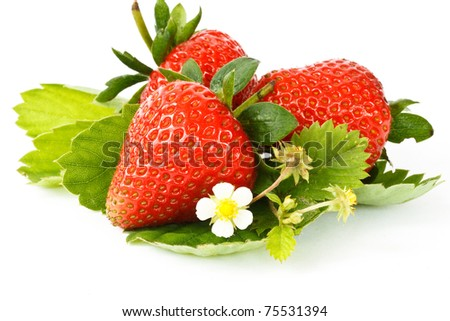red ripe strawberry on white background