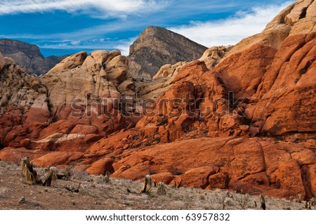 Red Rock Canyon Views