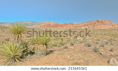 Red Rock Overlook, Red Rock Canyon Conservation Area, NV - stock photo