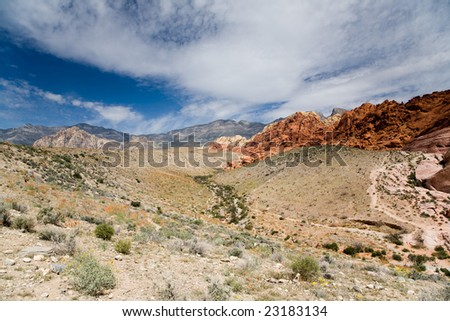 Red Rocks in the Red Rock Canyon National Reserve near Las Vegas, Nevada. Spring desert flowers in the foreground. - stock photo