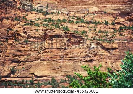 Red rocks wallpaper. Zion national park, southwestern Utah, USA - stock photo