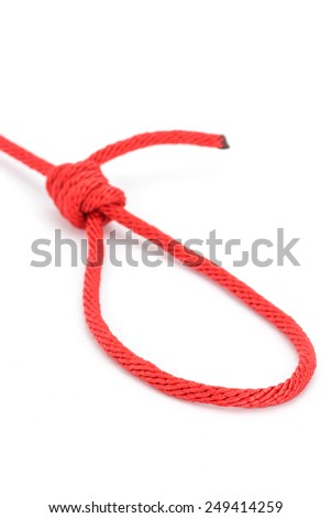 Red rope with knotted isolated on white background - stock photo