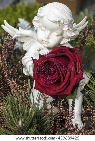 Red rose and an angel