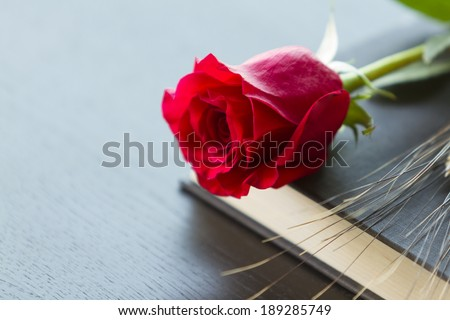 Red rose and ear of wheat with black book - stock photo