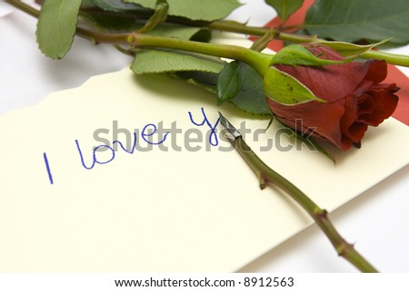 Red rose and love letter on a white