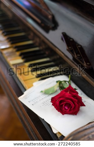 red rose and old piano