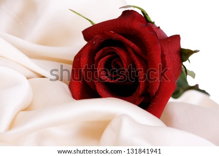 Red rose and white silk, and the concept of the wedding feast - stock photo