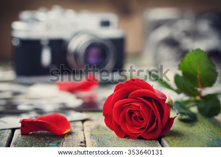 Red rose flower and vintage camera on wooden board, photography creative concept - stock photo