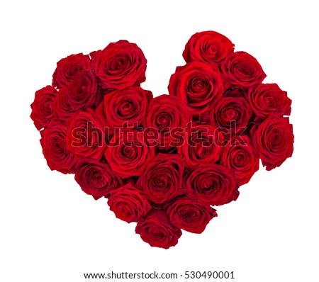 Red rose flowers isolated on white background. Fresh heart shaped bouquet.