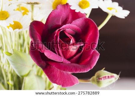 Red rose in a bunch of daisies, horizontal image - stock photo