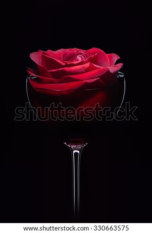 Red rose in wineglass, close up isolated on black studio shot  - stock photo
