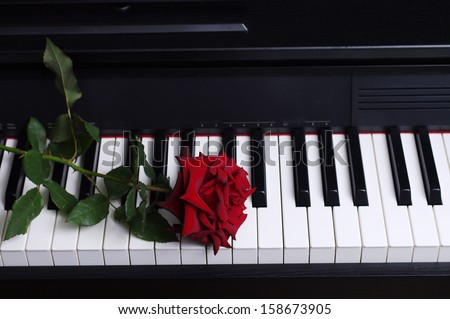 Red rose on a piano keyboard