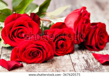 Red rose on a wooden table - stock photo