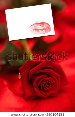Red rose on red silk against white card