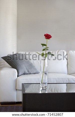 red rose on table in modern living room - stock photo