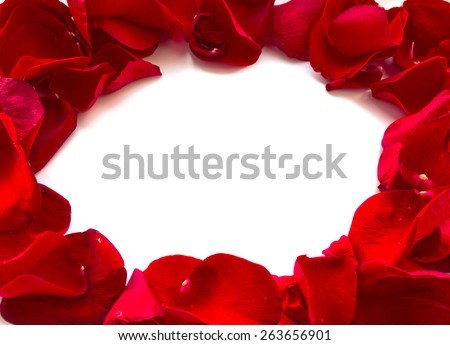 Red Rose Petals Border, isolated on white background - stock photo