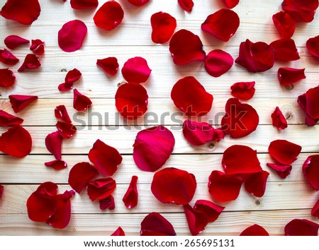 Red rose petals on light wooden background, top view