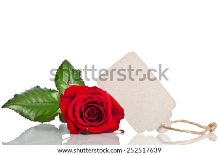 red rose with empty tag for your text on white background - stock photo
