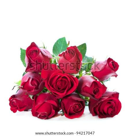 red rose with leaf isolated on white background - stock photo